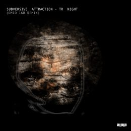 Subversive Attraction – Tr Night